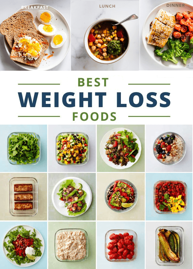 which diet is healthiest for weight loss